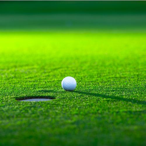 haveuheard dads day golf