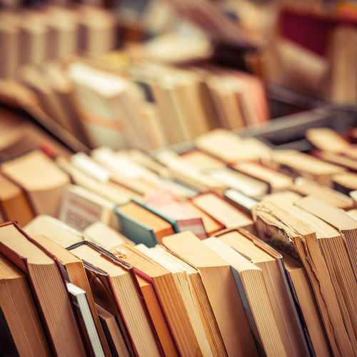 haveuheard books fsu