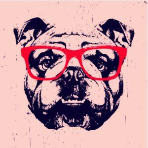 haveuheard bulldog uga