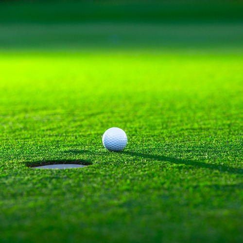haveuheard golf dad