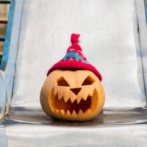 haveuheard halloween trick usf