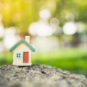 haveuheard housing usf