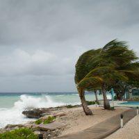 haeUheard wind weather hurricane