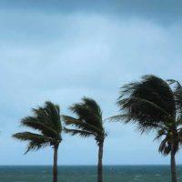haveuheard hurricane um