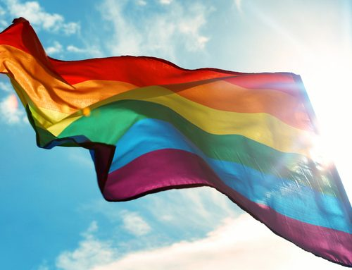 Diversity and Inclusion for LGBTQ College Students