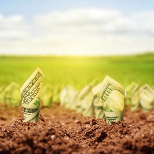 haveuheard money iu