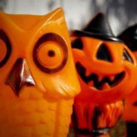 haveuheard trick treat halloween uf