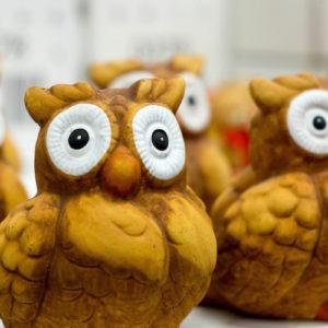 haveuheard sports owl fau
