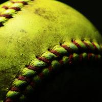 haveuheard spring sports unf