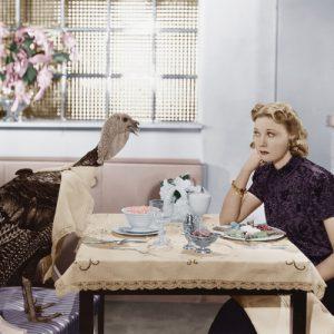haveuheard thanksgiving uga