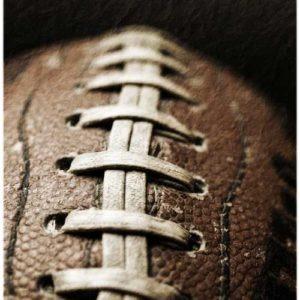 haveuheard football uf
