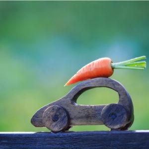 haveuheard veggies ucf