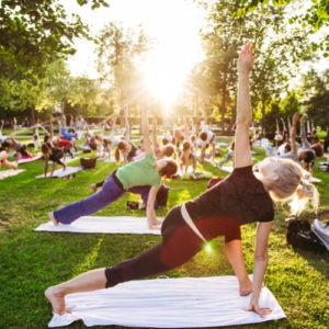 haveuheard yoga fau